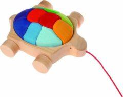 Grimm's regenboog schildpad trekfiguur