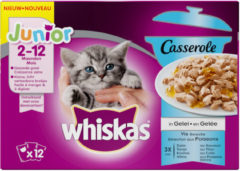 Whiskas Casserole Junior Vis Selectie in Gelei 12 x 85 gr