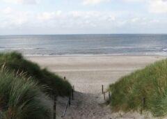 PB Collection 2 stuks Tuinschilderij Dune Path to sea 50x70cm