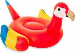 Rode Didak Pool Opblaasbare Mega Papegaai - Opblaasfiguur