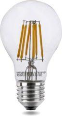 Groenovatie LED Filament Lamp E27 Fitting - 6W - 106x60 mm - Dimbaar - Warm Wit