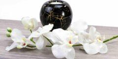 Waxinelicht Mini Urn zwart met bladgoud Loranto Glas