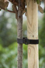 Zwarte Nature Klittenboomband met gesp 40x2,5cm set a 2 stuks