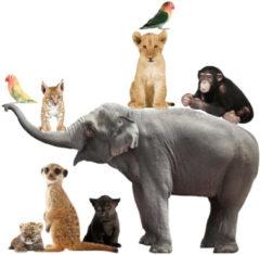 Muursticker - Safari Friends - Set van dieren - Inclusief Olifant XL - Kek Amsterdam