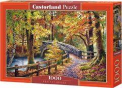 Castorland puzzel Brathay Bridge 68 cm karton 1000 stukjes