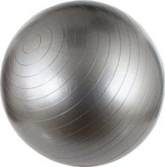 Avento Fitness/Gymbal - Ø 75 cm - Zilver - 75