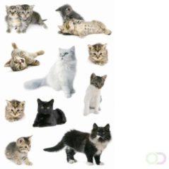 Stickers Herma 3433 DECOR kattenfoto\'s