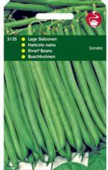 Hortitops Stamslabonen Phaseolus vulgaris Sonate - Sla- of sperziebonen - 50gram