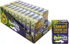 Multitrance MediCbd Blueberry Haze Chewing Gum - 20 Piece Display