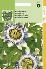 Blauwe Buzzy Seeds Hortitops Zaden - Passiebloem (Passiflora caerulea)