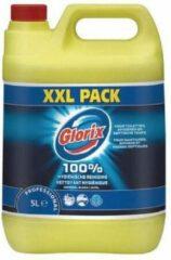 Glorix Bleek - Professional 5L