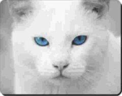 Advanta Witte kat blauwe ogen Muismat