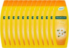 Palmolive Shampoo Elke Dag Voordeelverpakking 12x350ml