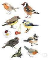 Witte HERMA Sticker DECOR 'Waterverf Vogels