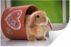 StickerSnake Muursticker Hangoordwerg - Baby hangoor dwerg in een bloempot - 120x80 cm - zelfklevend plakfolie - herpositioneerbare muur sticker