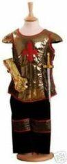 Rode Travis Brave Heart ridder verkleedset 3-5 jaar