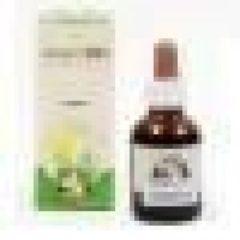 Erbenobili Anemivin Olosvita Assorbimento e Utilizzo Del Ferro 50 ml