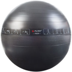 Grijze Pure2Improve Gym Ball (75cm) - Fitnessballen