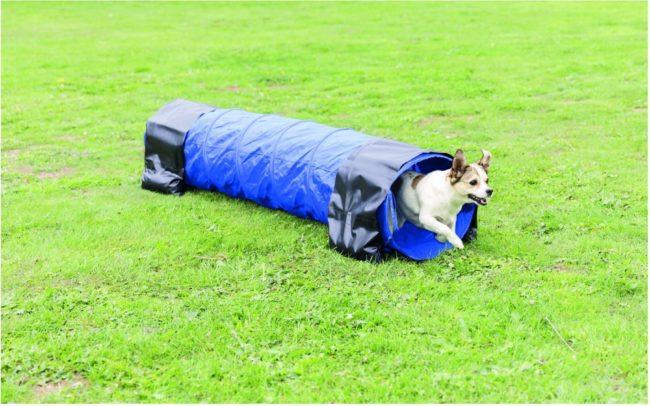 Afbeelding van Trixie Dog Activity Agility Tunnel - Hondensport - 40x200 cm Blauw