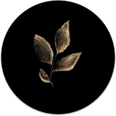 Beige Label2X Muurcirkel klein Leaf gold black - Ø 30 cm - Forex (binnen)