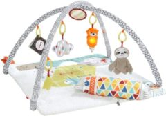 Fisher-Price deluxe perfect sense babygym 67 cm