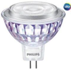 MLEDspot#70843900 - LED-lamp/Multi-LED 12V GU5.3 white MLEDspot70843900