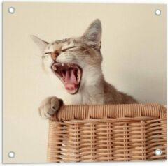 Beige KuijsFotoprint Tuinposter – Gapende Kat op Rieten stoel - 50x50cm Foto op Tuinposter (wanddecoratie voor buiten en binnen)