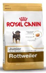 Royal Canin Breed Royal Canin Rottweiler 31 Junior hondenvoer 12 kg