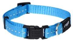 Rogz for Dogs Nitelife Hondenhalsband Verstelbaar Turquoise 20 x 1,1 cm