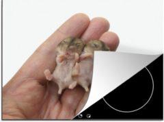 KitchenYeah Luxe inductie beschermer Baby hamster - 65x52 cm - Twee baby hamsters - afdekplaat voor kookplaat - 3mm dik inductie bescherming - inductiebeschermer
