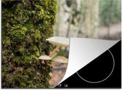 Groene KitchenYeah Luxe inductie beschermer Bemoste bomen - 70x52 cm - Paddestoelen op een bemoste boom - afdekplaat voor kookplaat - 3mm dik inductie bescherming - inductiebeschermer