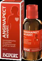 ANGINAPECT HEVERT Tropfen 100 ml
