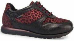 Rode Lage Sneakers Calzamedi SPORT SCHOENEN LEOPARD W