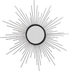 Zwarte Kolony Zonnespiegel