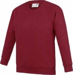 Awdis Academie Kinderen/Kinderen Bemanningsleden Hals Raglan School Sweatshirt (Claret)