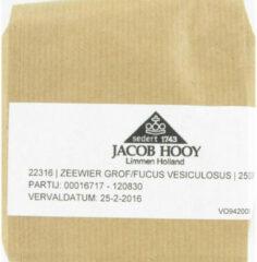Jacob Hooy Zeewier Grof Stukken