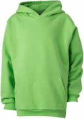 James & Nicholson James and Nicholson Kinderen/Kinderkapjes Sweatshirt (Kalk groen)