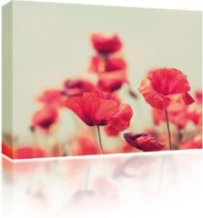 Blauwe Sound Art - Canvas + Bluetooth Speaker Poppies (41 x 51cm)