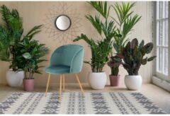 Blauwe Home24 Gestoffeerde stoelen Celina (set van 2), home24