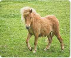 MousePadParadise Muismat Pony's - Pony in Nederland muismat rubber - 23x19 cm - Muismat met foto