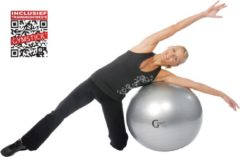 Gymstick Burst Resistant Gymbal - Fitnessbal - Met Online Trainingsvideo's - 55 cm