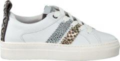 Develab Meisjes Lage sneakers 41850 - Wit - Maat 34