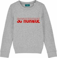 Cheaque SCHURQUE GRIJS KIDS SWEATER