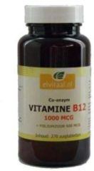 Vitamine B12 1000mcg + foliumzuur van Elvitaal : 270 zuigtabletten