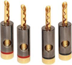 Luidspreker aansluiting - Banaanstekker - Professioneel - Dynavox