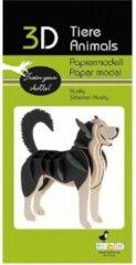 Grijze Fridolin 3D puzzel en bouwpakket Siberische Husky van karton