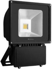 Schijnwerper - LED - 5600 lumen - Avide