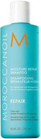 Afbeelding van Moroccanoil Moisture Repair Unisex Zakelijk Shampoo 250 ml