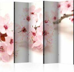 Roze Kamerscherm - Scheidingswand - Vouwscherm - Cherry Blossom II [Room Dividers] 225x172 - Artgeist Vouwscherm