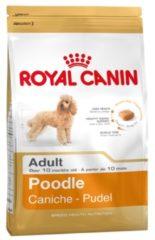 Royal Canin Bhn Poodle Adult - Hondenvoer - 1.5 kg - Hondenvoer